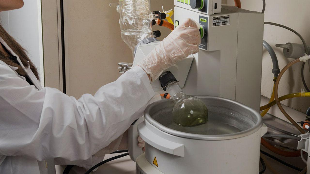 greentech alghe